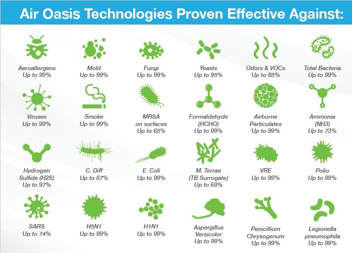 Air Pollution Air Oasis Is Proven to Eliminate image