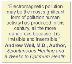 Weil Quote about ElectroSmog Pollution